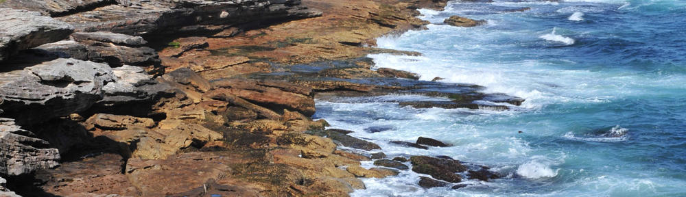 Shoreline Realty
